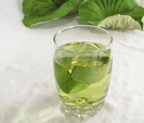 保健作用 荷叶泡水喝对肝,脾,胃,心脏都具有很好的保健作用,老年人图片